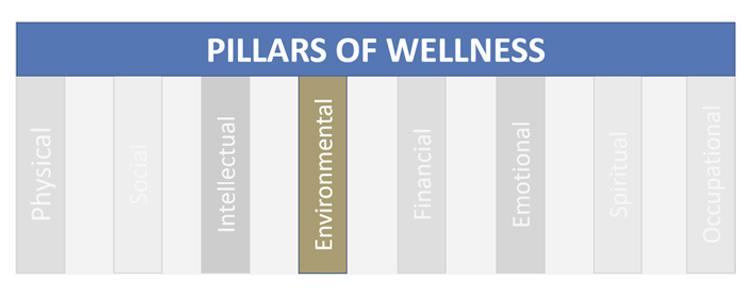 pillars-of-wellness-environmental