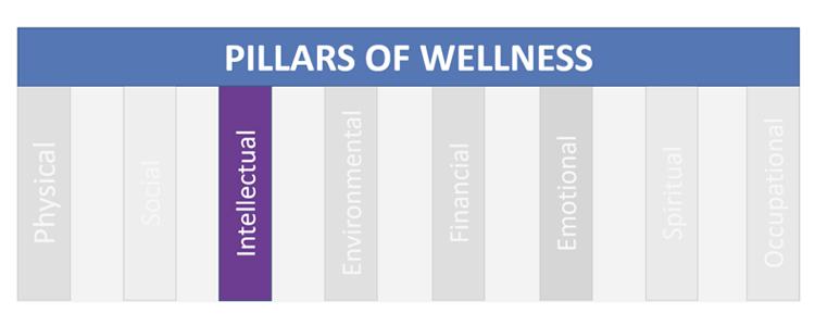pillars-of-wellness-intellectual