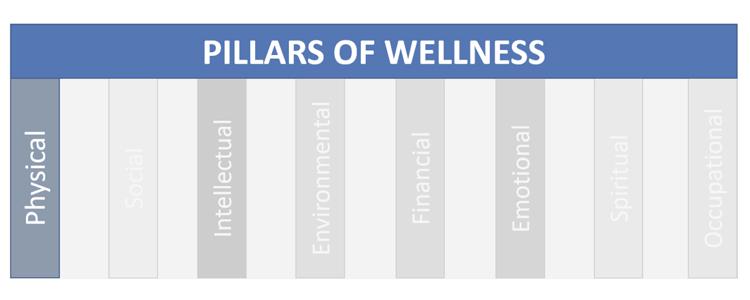 pillars-of-wellness-physical